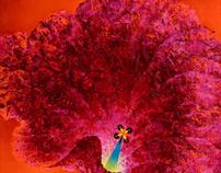 "Andrew Isaenkov, ""Flowers"""