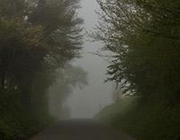 A foggy morning in a village.