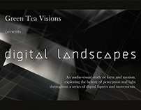 Digital Landscapes
