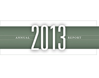 Alpha ProTech Annual Report
