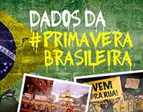 Dados da #primaverabrasileira | an infographic
