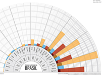 Infográficos Ensino Superior no Brasil