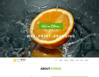 Citrus - One Page PSD Template
