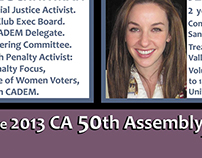 COMMISSION: 2013 Election Flier - Candidate Ladies