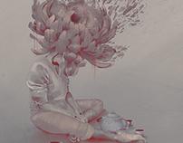 La infinita tristeza de ser un crisantemo