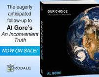 Our Choice by Al Gore