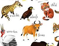 Animals of thailand