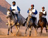horse race in Wadi Rum desert, Jordan