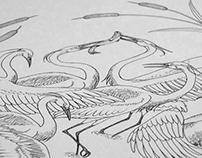 [ II/XXI ] White Egrets