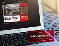 Web Project Portfolio