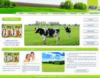 Website HiLo - www.hilo.co.id