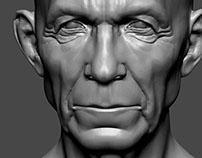 3D Heads Sculpting