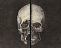 Study of Human Skull (Inspired by Leonardo da Vinci)