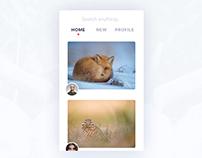 Photo Community App
