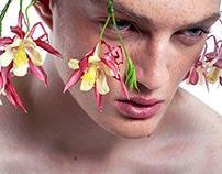 The Flower Сircumstance