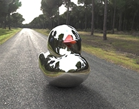 little lonely aluminum duck