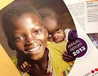MMV annual report 2013