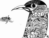 black and white doodling/random arts