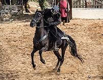 Torneio Medieval - Mercado Medieval de Obidos 2014