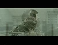 D E B A U C H E D (short film)