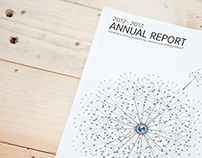 RMI Annual Report 2013
