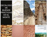 Panfletos Infográficos de Monográficos de Proyecto