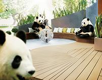 Ekologix - Pandas
