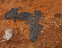 Acid mine drainage_LASTOFGOLD