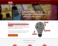 Wrodpress Template for Service Provider Company