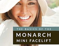 Mini Facelift eBook