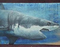 SHARK / REQUIN