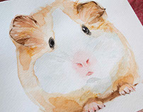 Small watercolor illustrations of animals