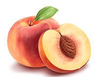 illustration of raspberry and peach