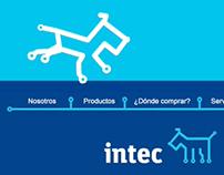 Intec. Intro 2008