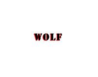 3D Chracter Model_ Wolf