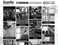 Parchet Chișinău - website