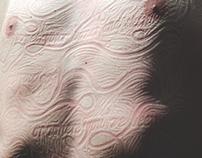 Bones and Skin
