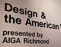 Design & the American Vote: plan, implement, exhibit