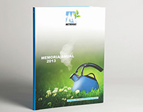 Metrogas 2013 Annual Report