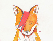 A fox per  day part one