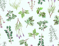 Watercolor Herb Textile Design