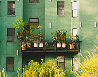 Neighborhood Profile: Lower East Side