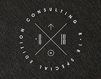8.18 Special Edition Consulting