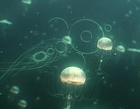 Jellyfish R&D