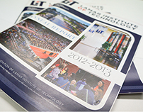 LIT Annual Report 2012 - 2013