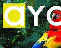Ayor Magazine