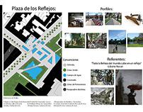 Ciclo Basico Segundo Semestre - 2010.II -Plaza Reflejos