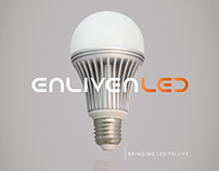 Brand Identity: Enliven LED