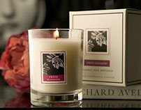Classic & Refined Candle Collection