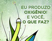 Garu x Instagrafite | Campanha Passaporte Verde